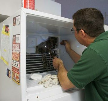 Холодильная камера не морозит